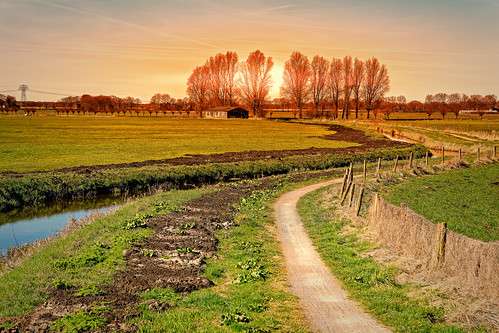 ditch fence landscape meadow path shed sun sundown trees degroeve drenthe nederland nl nature ruralscene agriculture farm field outdoors land grass summer tree sky landscaped scenics greencolor hill sunset europe season