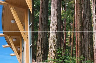 Forestry is one of B.C.'s founding industries and a key driver of B.C.'s economy. In 2016, the industry accounted for $14 billion in exports — 35% of the value of all B.C. goods exported. Forestry directly employs more than 60,000 people in over 140 communities around the province. In 2015–16, direct forestry revenues to the provincial government were $833 million, helping to support vital services such as health care and education.