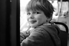 Wilfie on the bus