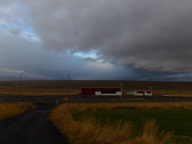 Morning in a field 160 km north of Reykjavik