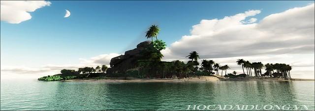 phông 3d hồ cá đại dương dd-01