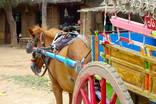 Horse and carriage at Inwa, Myanmar