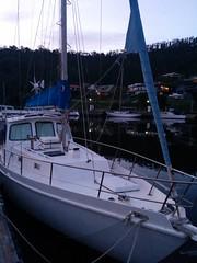 sail(0.0), sailing ship(0.0), yacht(0.0), sailing(0.0), scow(0.0), dinghy sailing(0.0), catamaran(0.0), sailboat(1.0), keelboat(1.0), vehicle(1.0), ship(1.0), mast(1.0), watercraft(1.0), boat(1.0),