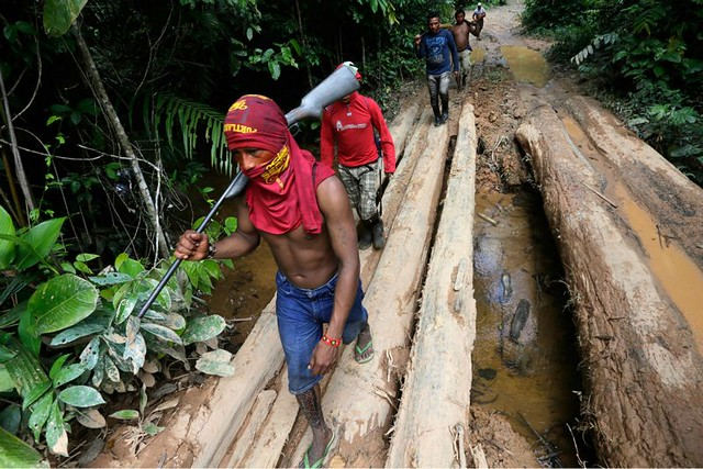 1_amazon-indians-strip-tie-beat-illegal-loggers (4).jpg