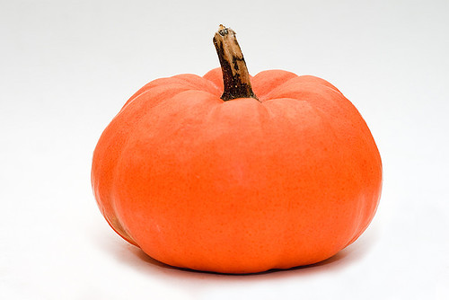 pumpkin white background