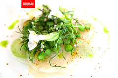 Raw Light Smoked Scallop, Green Beans & Pickle…