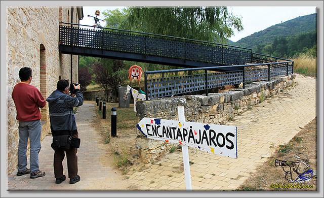 Encantapájaros y Feria de Oña 2014 (2)