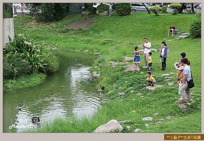 台南小吃綠盈牧場26