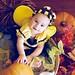 Gianna Bumble Bee