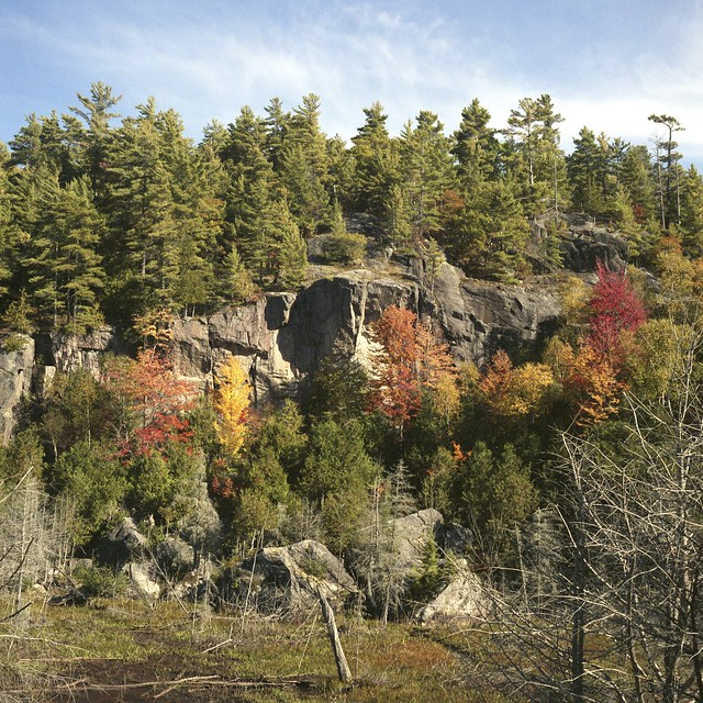 Canadian Shield Between Dorset and Highway 60 on 35