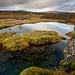 Þingvellir by Jón Óskar.