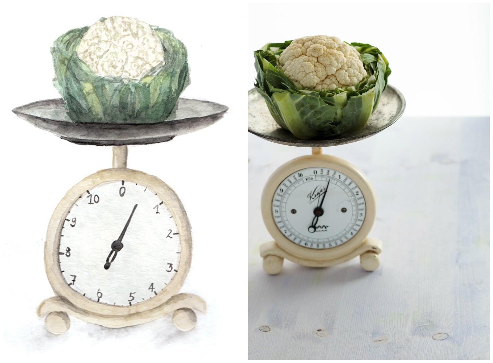 New Blog Design - What's For Lunch, Honey?