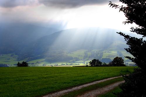 trees sky sun clouds germany bavaria shadows meadow countrylane berchtesgadenerland högl