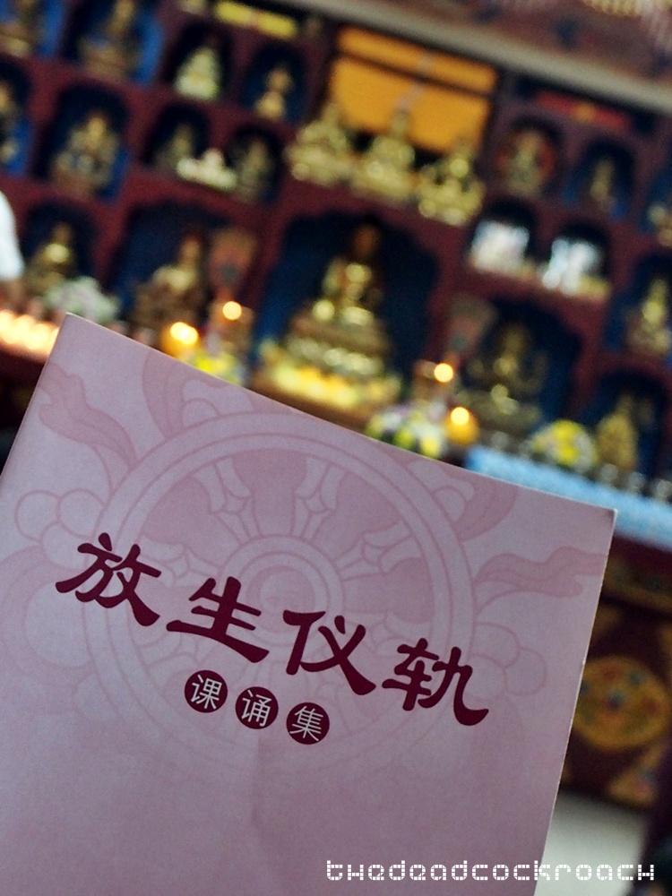 life liberation, santi forest monastery, sutera, ulu tiram, vegetarian, 五福城, 宁心寺, 放生仪轨, travels,malaysia,johor bahru