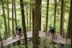 Fall laps in Whistler Bike Park