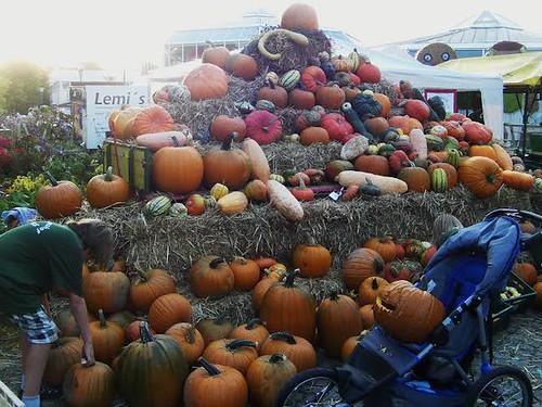 Kürbisfest, Bauernmarkt, Oktober 2014, Gruga
