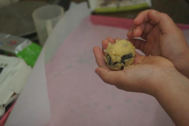 Gluten free choc chip cookies DSC00607