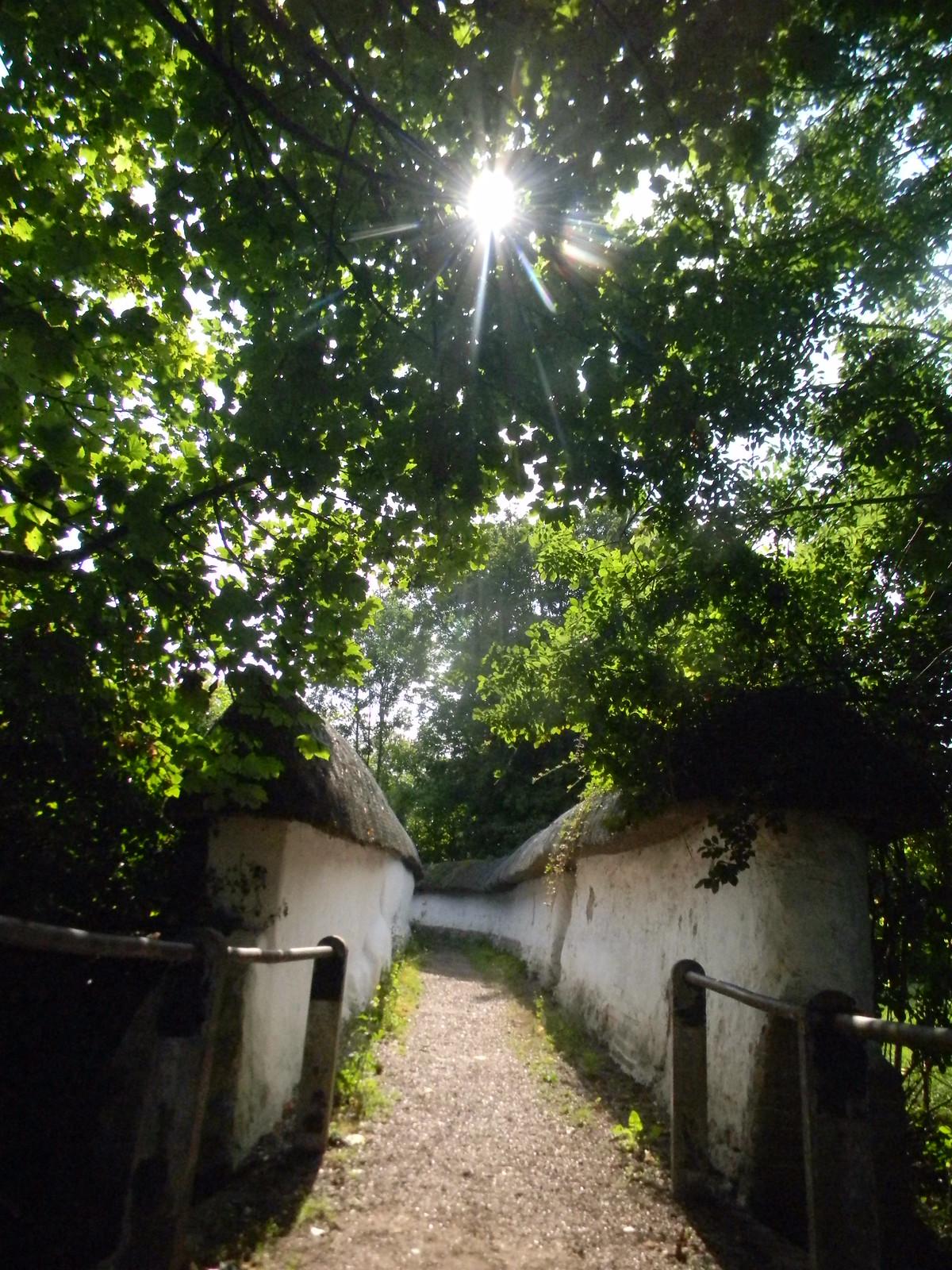 Thatched walls, Blewbury Cholsey to Goring