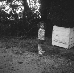 Semflex Standard 3.5 Roll n°8 - My Daughter I