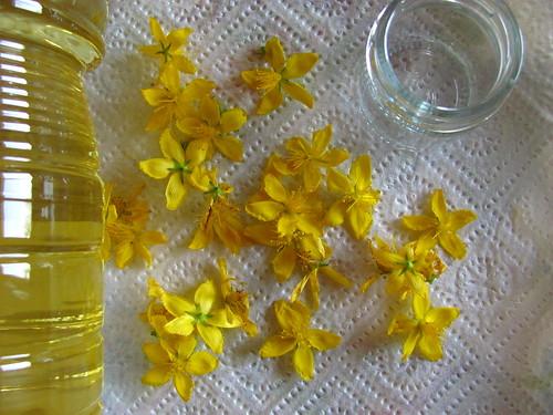 olio di iperico | /www.dettochiaramente.it