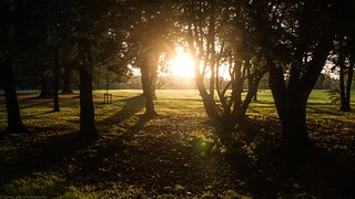 Park Sunset Wednesday