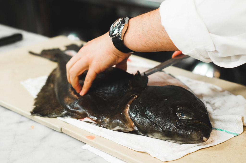 Filleting Halibut