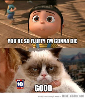 You're So Fluffy I'm Gonna Die...