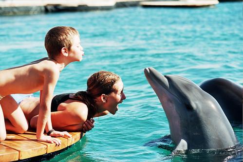 Dolphin Reef - Eilat