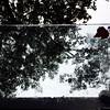 Fall Day #portland #oregon