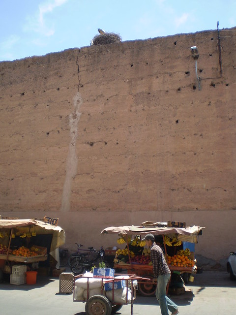 Marrakesh's city walls, complete with the usual sites: fruit-sellers and stork nests