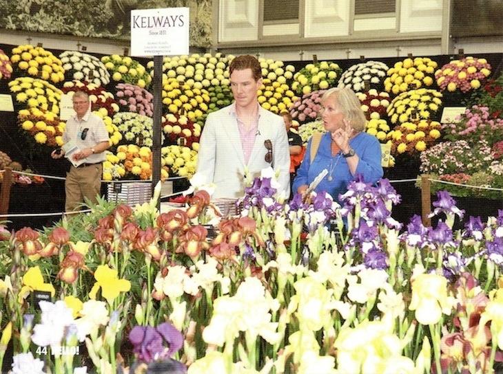 flower show004B