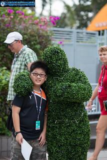 Formula 1 Singapore Airlines Singapore Grand Prix 2014