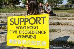 United for Democracy....Solidarity for HongKong ....