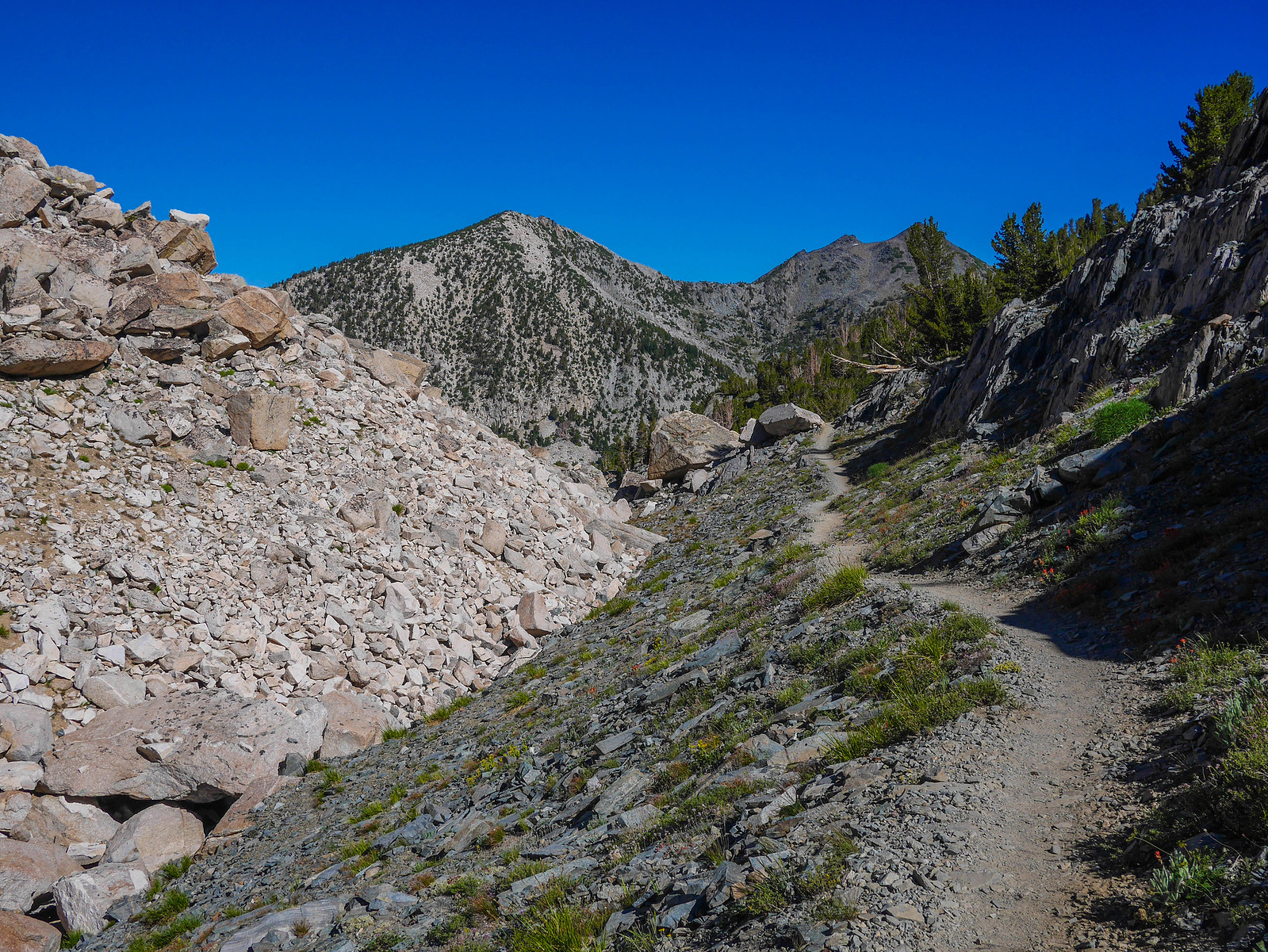 Heading north on the JMT between Lake Virginia and Purple Lake