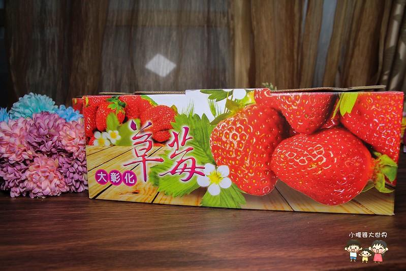 彰化草莓 002