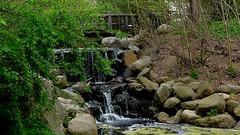 Prospect Park & Zoo, Brooklyn New York