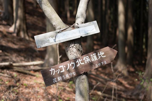 20160430-鳴神山-0256.jpg
