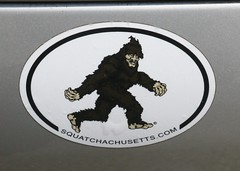 Squatchachussetts