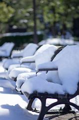 snow bench
