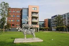 WKZ (Wilhelmina Kinderziekenhuis)