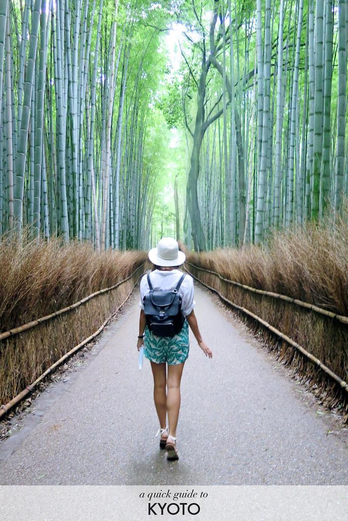 Guide to Kyoto www.apairandasparediy.com
