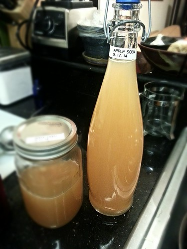 apple cider (ginger bug ferment)