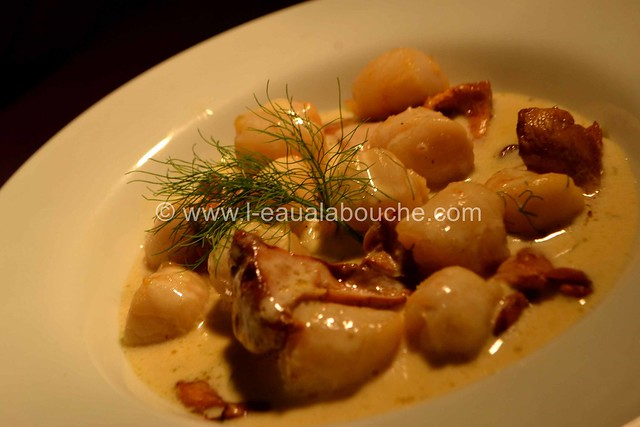 Cassolette de Noix de St.Jacques & de Chanterelles © Ana Luthi Tous droits réservés 040