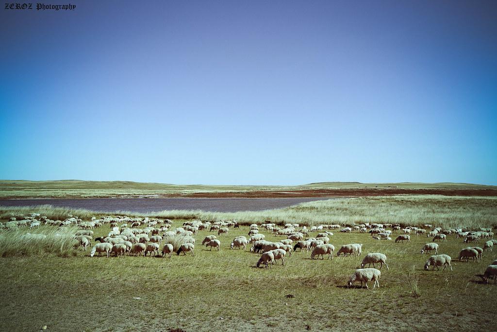 內蒙古‧印象1877-51-2.jpg
