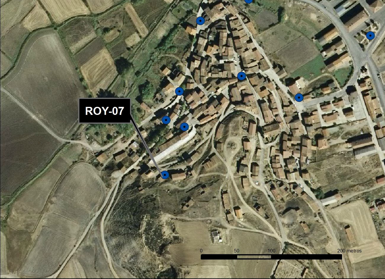 ROY_07_M.V.LOZANO_ POZO DE LA SALUD_ORTO 1