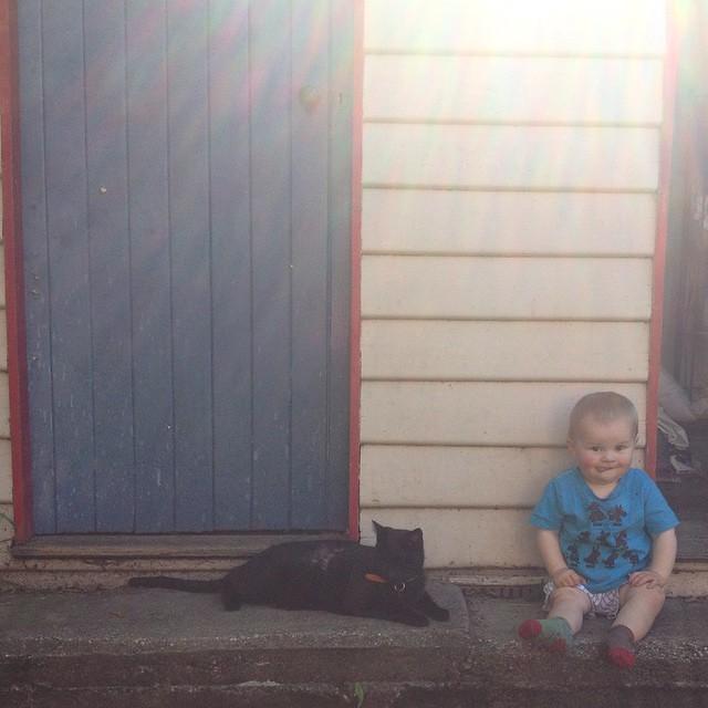 #atticuskitty & #babyjagoe sitting in the sun today