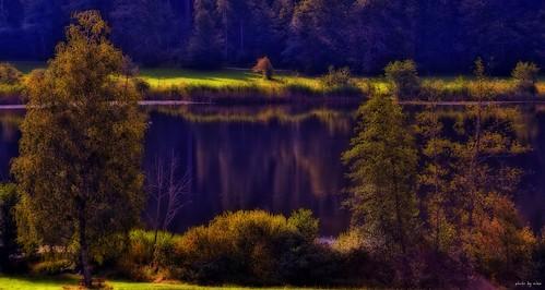 ~ at the lake ~