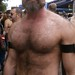 FOLSOM STREET FAIR 2014 ! HELLA HOT HAIRY HUNK (safe photo)
