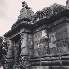 Once a Buddhist stupa, Rajarani temple gets its name from Rajarania stone that was used for building this marvel. This is one of the surviving Kalingan deula from the gore of vermillion!