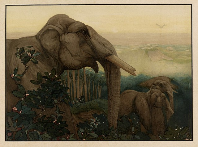 015-Toomai de los elefantes-Sixteen illustrations of subjects from Kipling's Jungle Book-1903 -Library of Congress